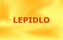 Lepidlo ME-9001